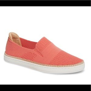 UGG SAMMY SLIP-ON SKATER SNEAKER IN CORAL